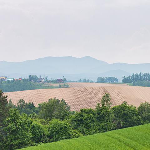 農業振興地域